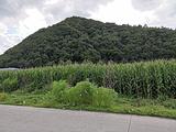 宾县旅游景点攻略图片