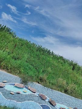 龙山湖旅游景点攻略图