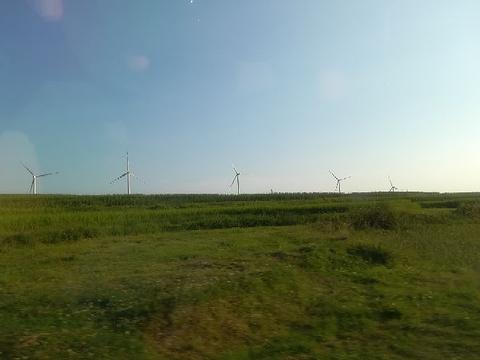 云顶草场的图片