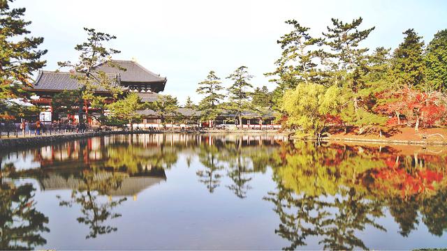 奈良公园旅游景点图片