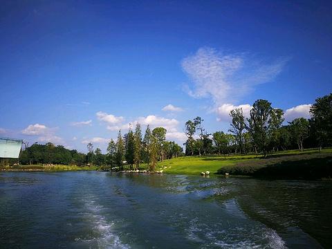 麓湖公园旅游景点图片