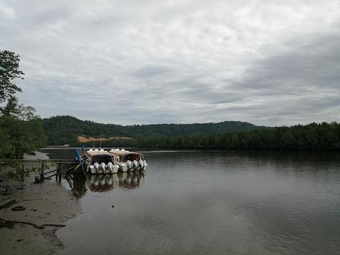 孟河红树林旅游景点攻略图