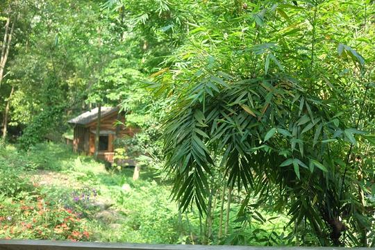 广州二龙山薰衣草森林世界旅游景点图片