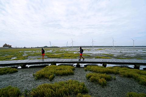 高美湿地旅游景点攻略图