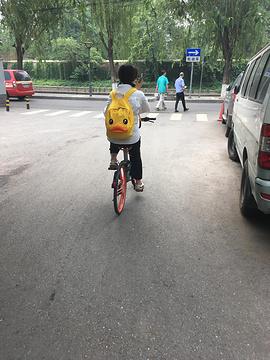 北京交通大学旅游景点攻略图