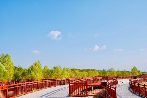 霸王河生态旅游区旅游景点攻略图