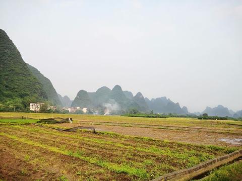 阳朔公园旅游景点图片