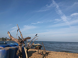 尼甘布海滩