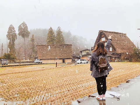 白川乡旅游景点攻略图