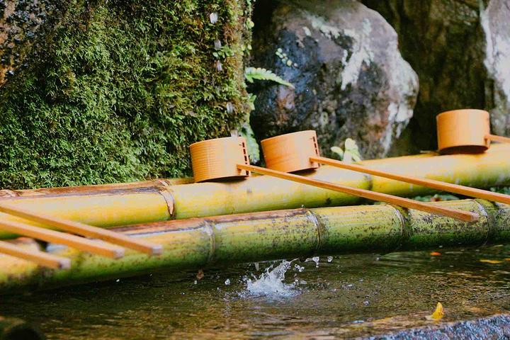 """""""...一座神社,旧称为春日神社,是所有前来奈良游玩的游客必须来的地方,可算是奈良的一个网红拍照打卡地_春日大社""""的评论图片"""