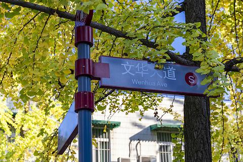 四川大学的图片