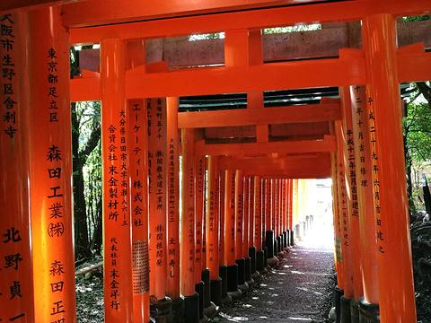 伏见稻荷神社旅游景点图片