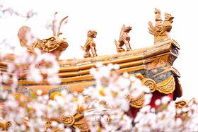 徐州,盛产帝王的地方!给我三天时间,带你看不一样的徐州之美!