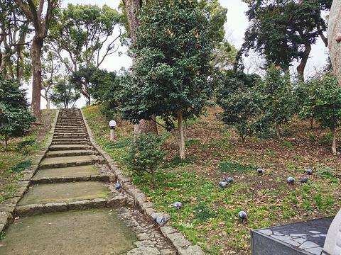 天王寺公园旅游景点图片