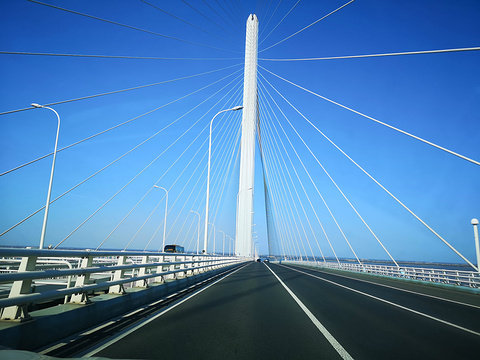 上海长江大桥旅游景点图片