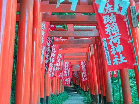 佐助稻荷神社旅游景点图片