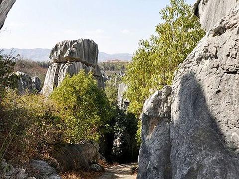 步哨山旅游景点图片