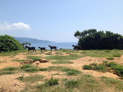 垦丁牧场旅游景点图片