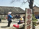凤阳旅游景点攻略图片