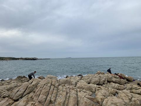 环海路风景线旅游景点图片
