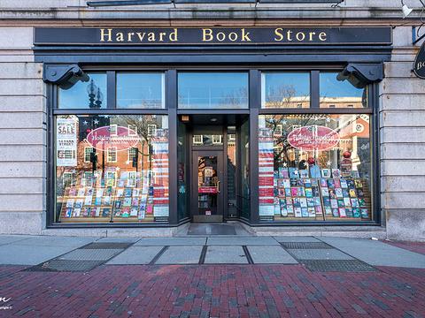 哈佛大学旅游景点图片