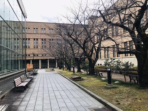 京都大学旅游景点图片