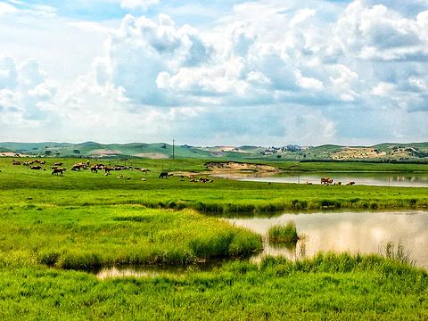乌兰布统旅游区旅游景点图片