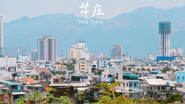 龙山寺旅游景点图片