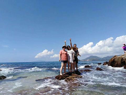 盐洲岛旅游景点攻略图