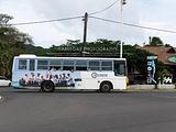 努瓦勒埃利耶旅游景点攻略图片