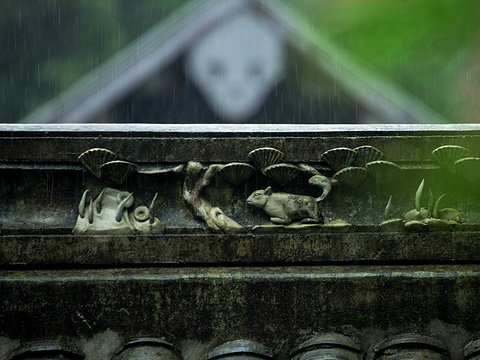普照寺旅游景点图片
