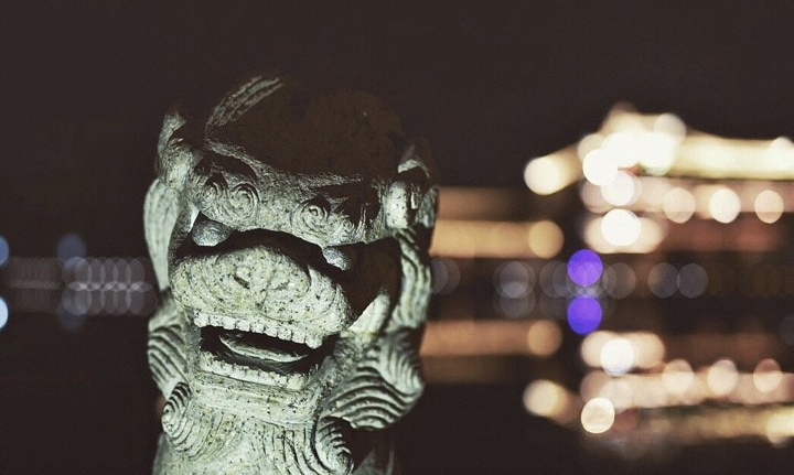 """""""【苏州】免费游古镇,原来夜晚的锦溪才更配诗词 ._锦溪古镇""""的评论图片"""
