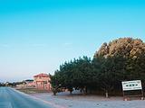 Greater Plettenberg Bay旅游景点攻略图片
