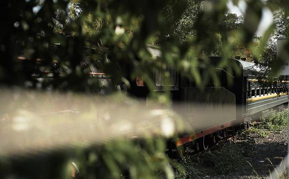 火车头公园旅游景点图片