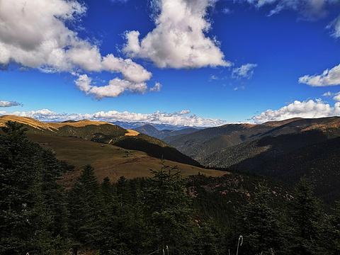 毛垭草原旅游景点图片