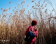 【发游记赢限定圣诞礼物】贵阳读城记,遇见最舒适的秋日时光