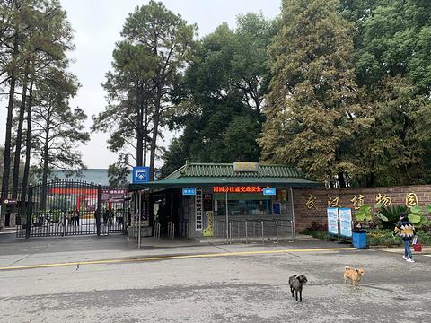 武汉植物园旅游景点攻略图