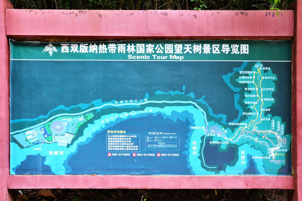 西双版纳热带雨林国家公园望天树景区旅游导图