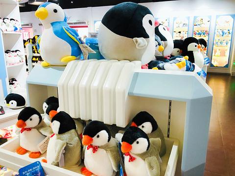 南极企鹅馆