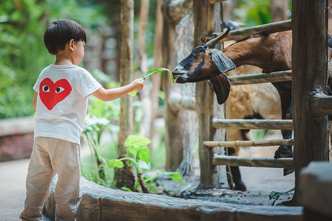 三亚彩色动物园旅游景点攻略图