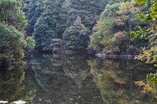戴震公园旅游景点图片