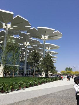 国际馆(北京世界园艺博览会)旅游景点攻略图
