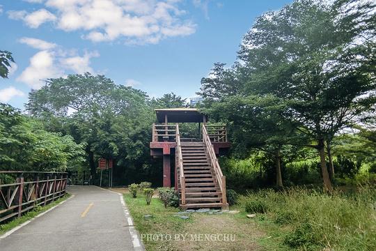 淡水河红树林自然保留区旅游景点图片