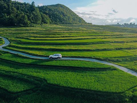 高坡苗乡旅游景点图片