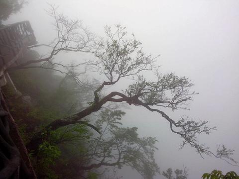 天门山旅游景点攻略图
