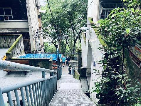 鹅岭二厂旅游景点图片