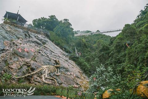 古龙峡旅游景点攻略图