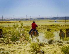 北京到新疆,三人单车11天,8600公里极限自驾环行北疆#写游记拿旅行基金#