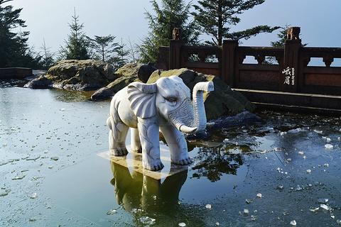 洗象池旅游景点攻略图