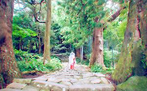 带上一张JR PASS一起去伊势、熊野、和歌山来一场不一样的小众之旅